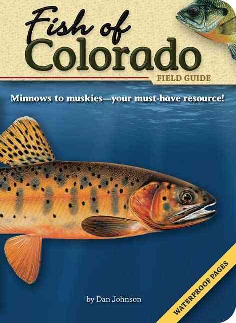 Fish of Colorado Field Guide By Johnson, Dan